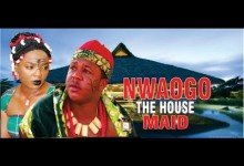 nwaogo the housemaid
